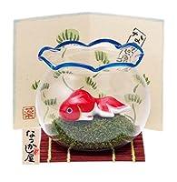 夏あそび金魚(大金魚鉢付) 9567