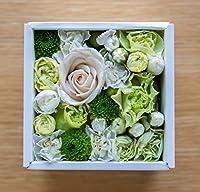 花 ギフト フラワーボックス アレンジメント プレゼント サプライズ お祝い 誕生日 記念日 ホワイトボックス   (ライム×ホワイト)WB-LW10