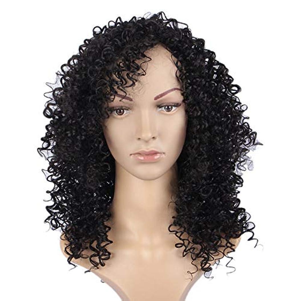 横に迷信投票WASAIO スタイルの置換のための小さな巻き毛ウィッグアクセサリー女性グラデーションアフリカンブラックロールヘッドギア高温ワイヤー爆発 (色 : 黒)