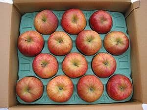 北斗りんご 5kg(14玉)北海道産ほくとリンゴ【期間限定】11月下旬 【出荷元:北海道四季工房】