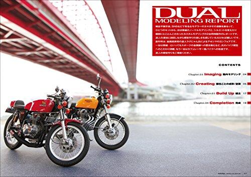 DUAL MODELING REPORT 01