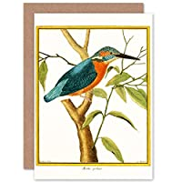 Bird Common Kingfisher Martin Pecheur Greeting Card With Envelope Inside Premium Quality 鳥キング