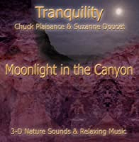 MOONLIGHT IN THE CANYON (Tranquility Series) by Suzanne Doucet