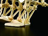 テオ・ヤンセン式二足歩行ロボット (大人の科学マガジンシリーズ) 画像