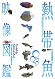 熱帯魚映像図鑑 バーチャル・アクアリウム 映像と音で愉しむ美しき熱帯魚の世界[DVD]