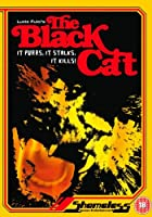 Black Cat [DVD] [Import]