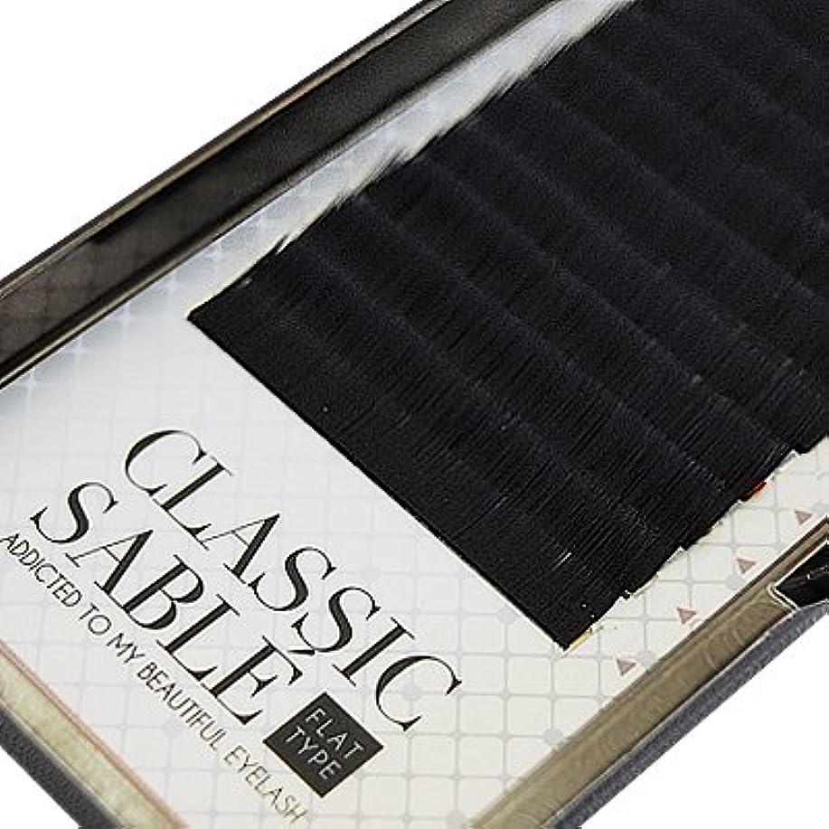 ためらう宿るランプ【amass Bona】クラシックセーブル フラットタイプ Dカール 0.20mm×12mm