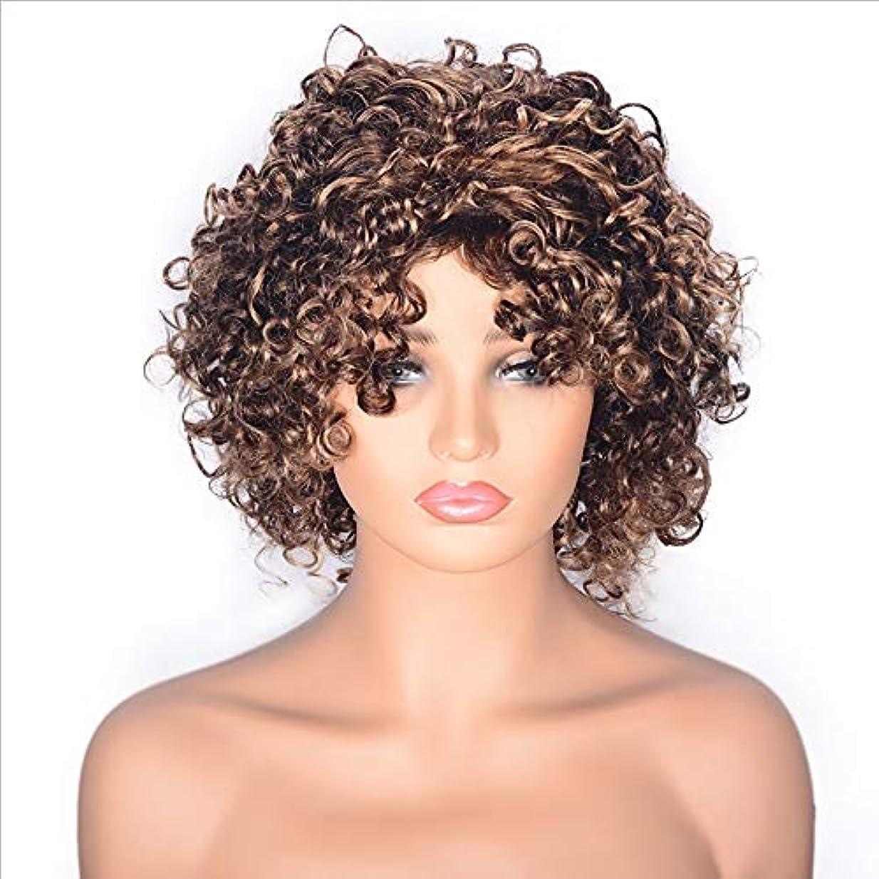ご覧くださいブルーベルシマウマYOUQIU 虎門髪ショートカーリーウィッグブロンドとブラウンオンブルウィッグ耐熱性繊維のウィッグと黒人女性アフロ変態ウィッグ用レースフロントウィッグ (色 : ブラウン, サイズ : 12