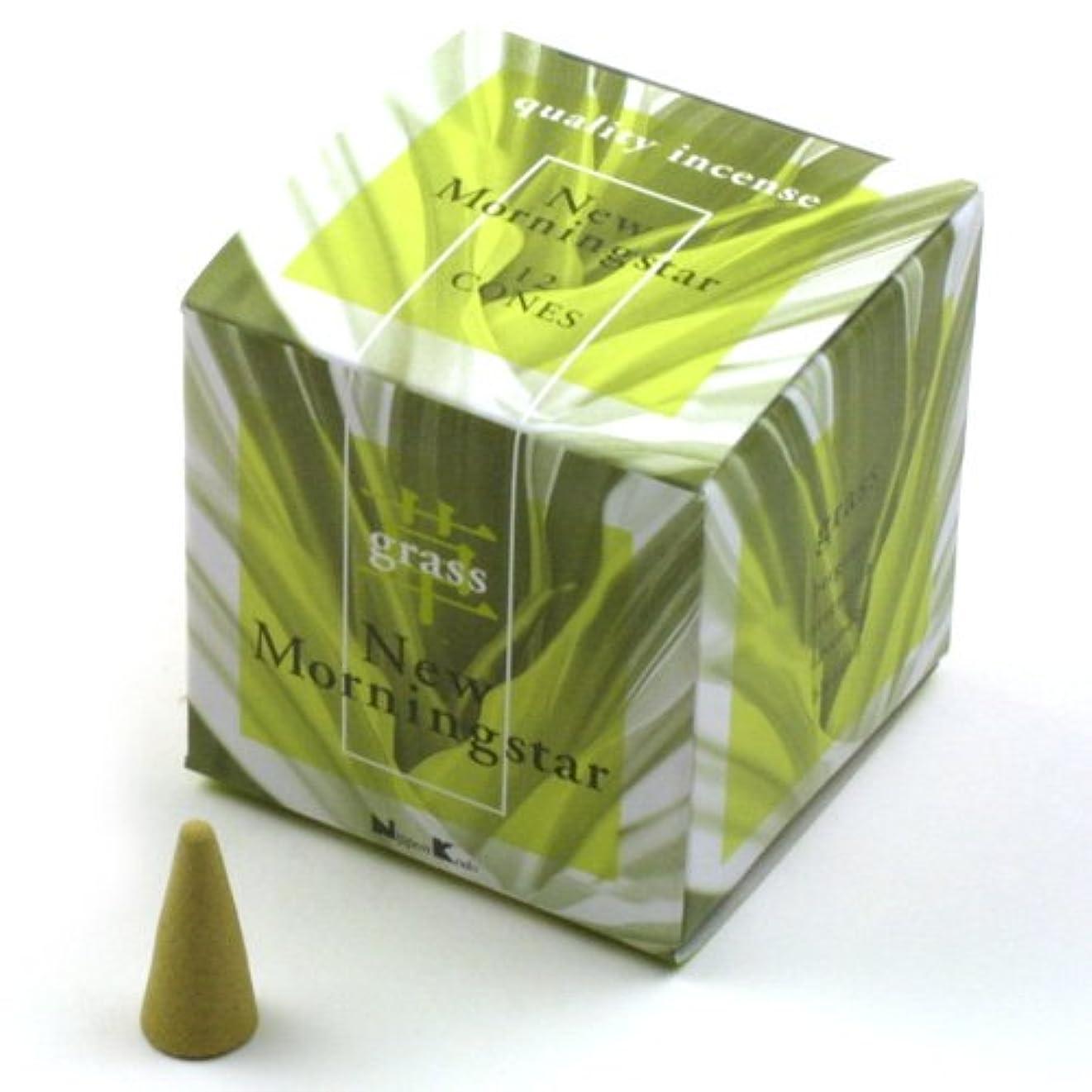 支払い外交官樹木ニューモーニングインセンスコーン グラス(grass)