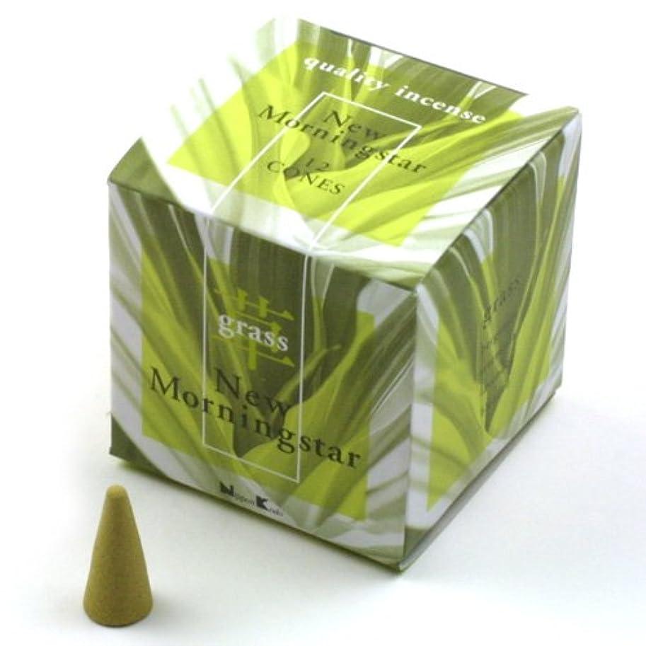 信頼性みなすパズルニューモーニングインセンスコーン グラス(grass)