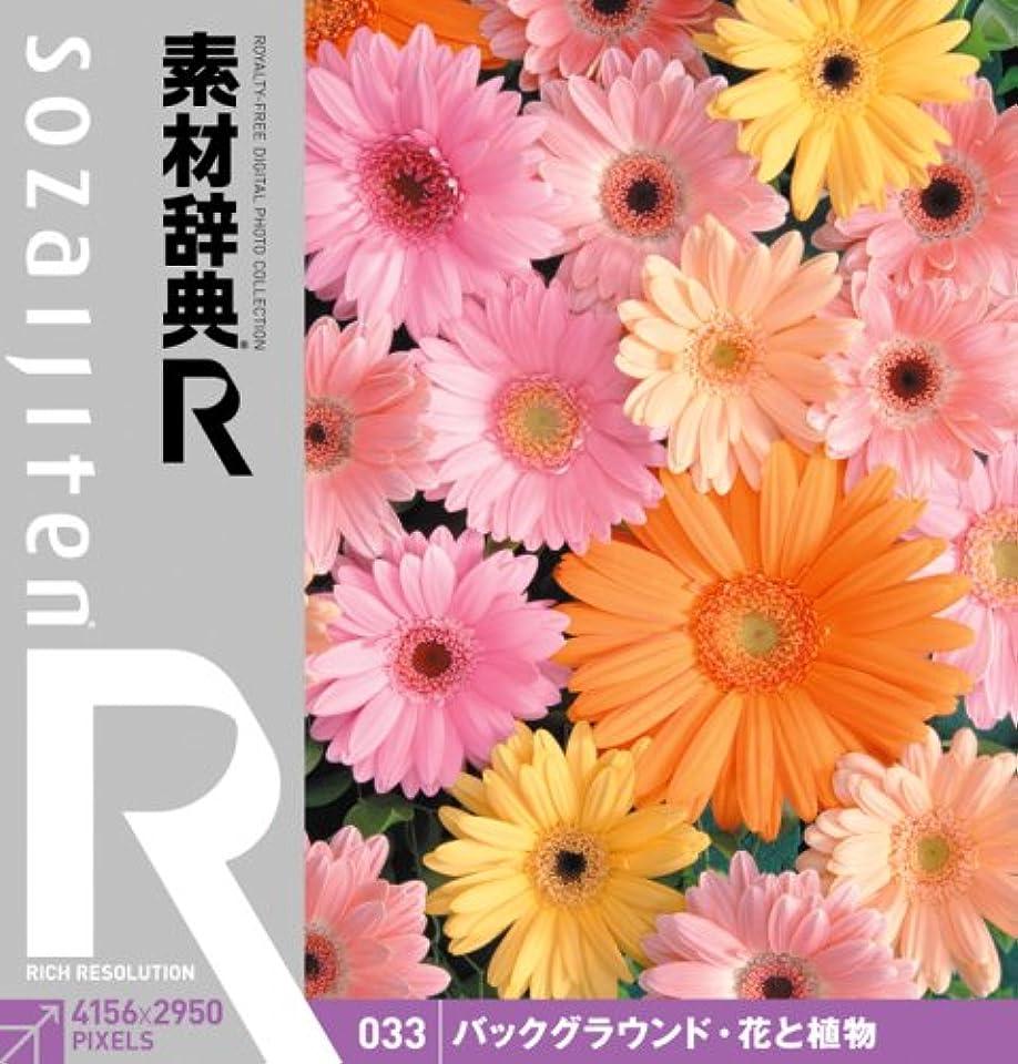キャリッジ意見アフリカ人素材辞典[R(アール)] 033 バックグラウンド?花と植物