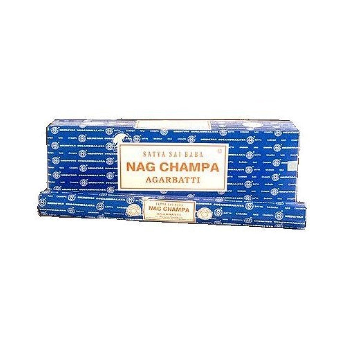承認飛行場コミットメントNag Champaジャンボ( 16