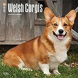 Welsh Corgis 2018 Calendar