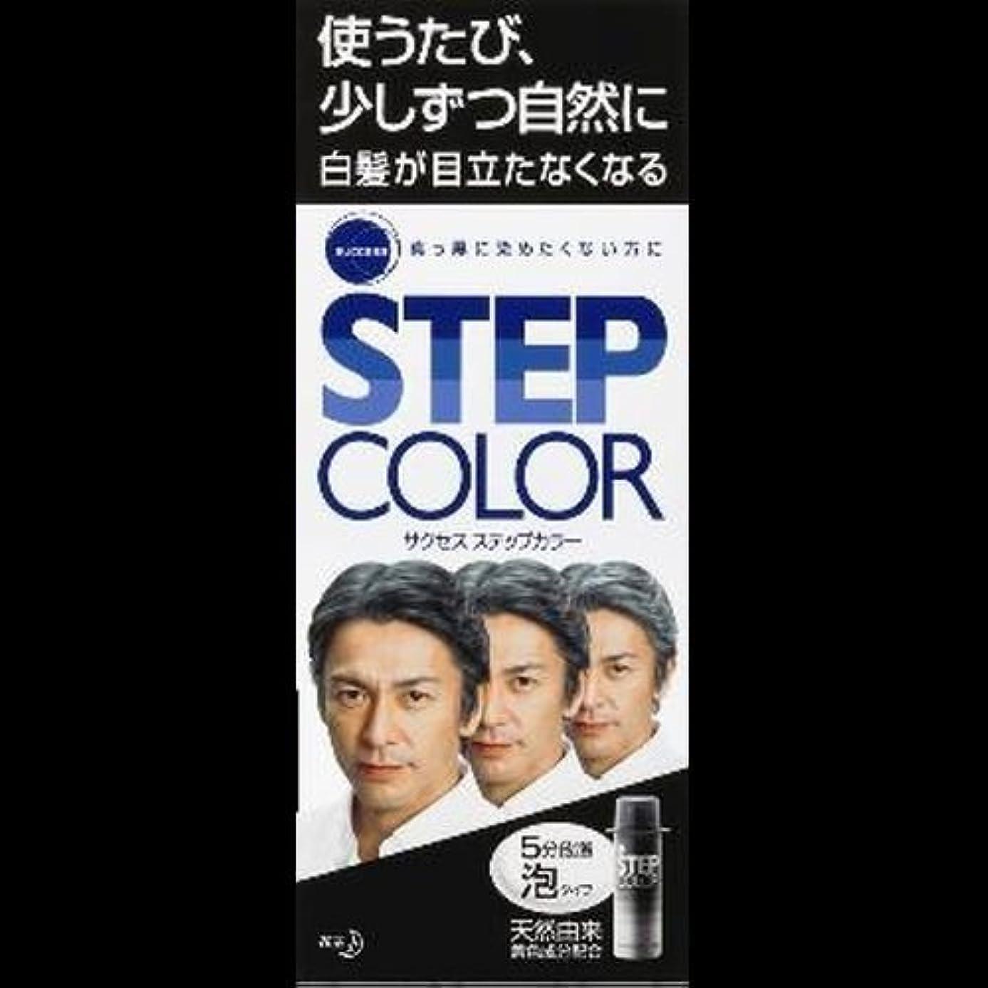 【まとめ買い】サクセス ステップカラー 110g ×2セット