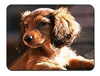 ダックスフント、犬、子犬、日 パターンカスタムの マウスパッド 動物 (22cmx18cm)