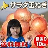 玉ねぎ 10kg 北海道 富良野産 サラダ玉葱 訳あり 10kg