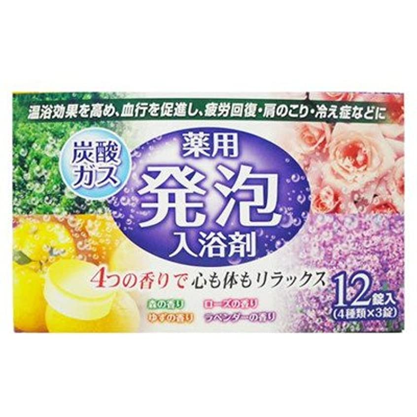 みがきますフルーツ野菜清める薬用発泡入浴剤炭酸ガス12錠入り4つの香りで心も体もリラックス(4種類×3錠) (リベロ)
