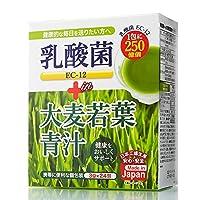 乳酸菌青汁 青汁 乳酸菌250億個含有 大麦若葉青汁 国産 大葉若葉 置き換えダイエット 送料無料