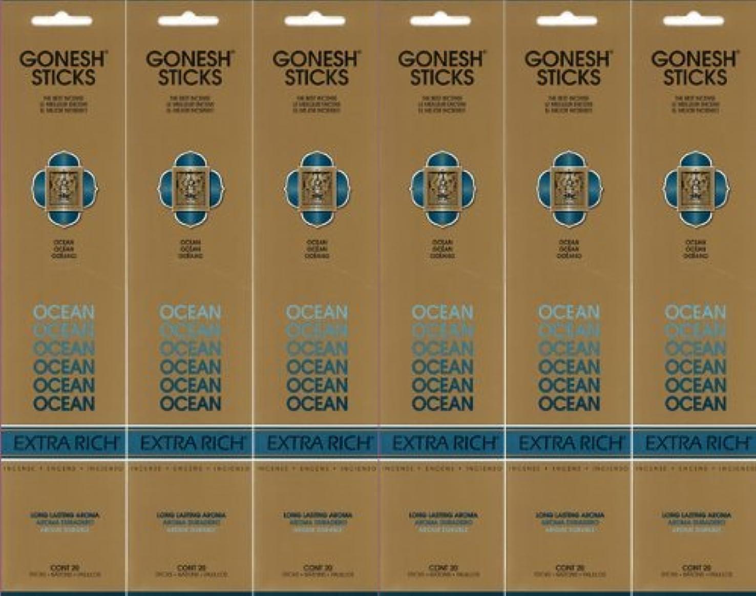 目の前の印象派料理GONESH ガーネッシュ OCEAN オーシャン スティック 20本入り X 6パック (120本)