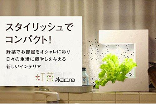 アカリーナ akarina14 Terrara 灯菜 LED水耕栽培器 野菜栽培キット オリンピア