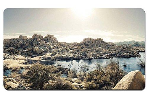 モハーベ砂漠、湖、草、石、ジョシュアツリー国立公園、カリフォルニア州、アメリ...