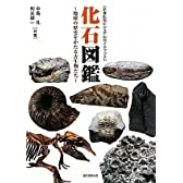 化石図鑑―地球の歴史をかたる古生物たち (示準化石ビジュアルガイドブック)