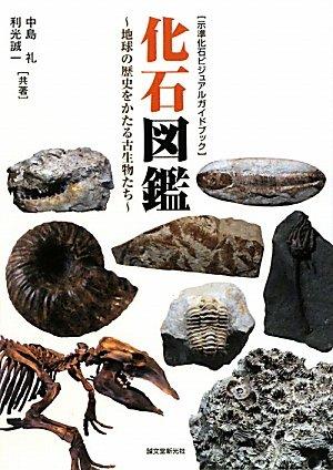化石図鑑―地球の歴史をかたる古生物たち (示準化石ビジュアルガイドブック)の詳細を見る