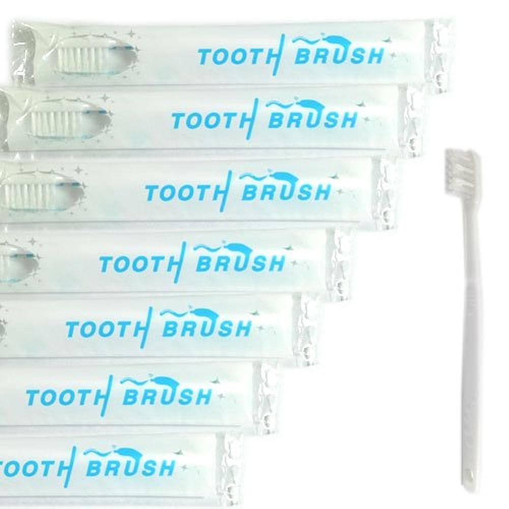 ダイエットペストリー列挙する業務用 使い捨て(インスタント) 粉付き歯ブラシ(500本組)