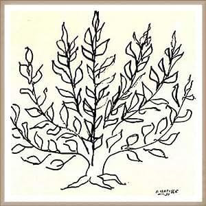 ポスター アンリ マティス 低木 1951年 額装品 ウッドベーシックフレーム(オフホワイト)