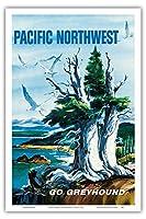 太平洋岸北西部 - グレイハウンド - ビンテージな世界旅行のポスター によって作成された S.フレミング c.1958 - アートポスター - 31cm x 46cm