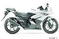 W 2011 EX250JBF Motorcycle Service Manual W 99924-1391-03