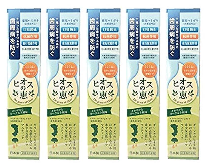 ヘルパー音つかの間ヒオスの恵 60g 【まとめ買い1個60g×5個】薬用ハミガキ 日本製