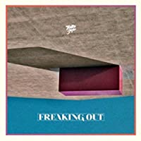 Freaking Out by Toro Y Moi (2011-09-13)