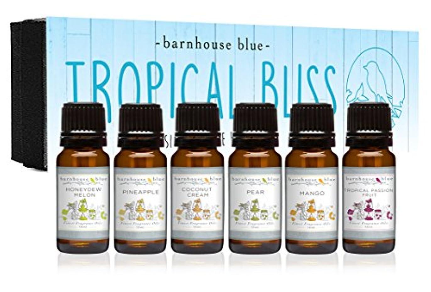 地味な精査鎮痛剤Premium Fragrance Oils - Tropical Bliss - Gift Set 6/10ml Bottles - Coconut Cream, Honeydew Melon, Mango, Pear...