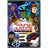 Young Justice Outsiders: Season 3