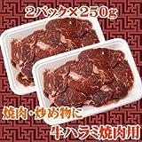 【商番1101】焼肉に最適カット 牛ハラミ焼肉用 500g(250g×2)