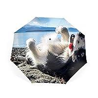 折りたたみ傘 ワンタッチ自動開閉 Teflon加工 8本骨210T高強度グラスファイバー 耐風撥水 晴雨兼用 収納ポーチ付き犬動物ビーチ海