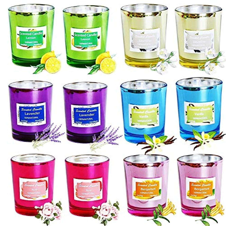 ブラザー伝統焼く処置 12PCS 100%ソイワックスキャンドルフレグランスキャンドルグラス