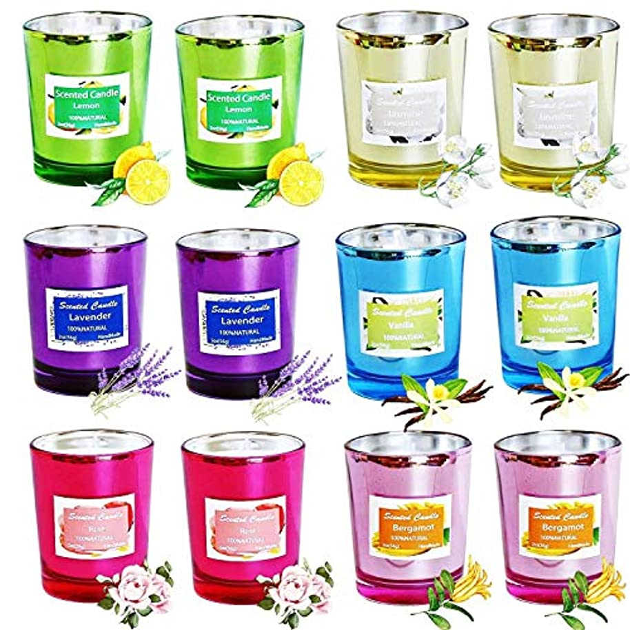 ホラーカウンタ菊EasyH 12PCS 100%ソイワックスキャンドルフレグランスキャンドルグラス
