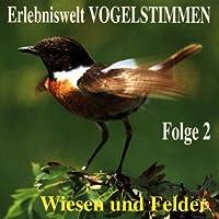Erlebniswelt Vogelstimmen