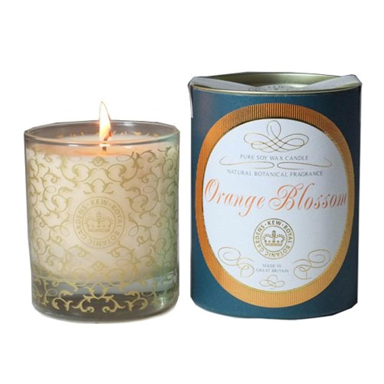 落ち着く出席する誠実さCANOVA キューヴィンテージ グラスキャンドル オレンジブロッサム Kew Vintage GlassCandle OrangeBlossom カノーバ