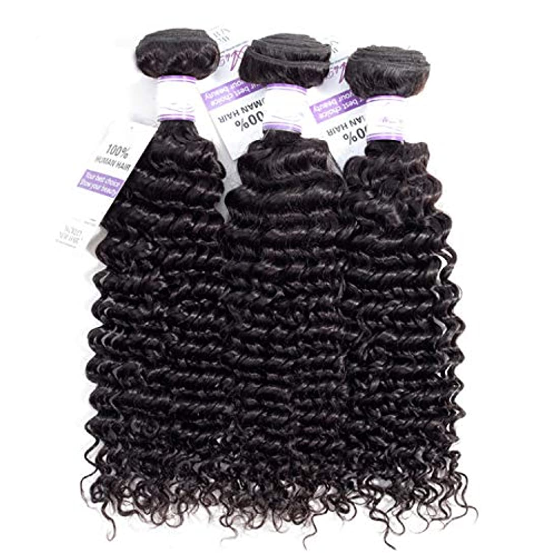 スクラップトーストアクセシブルブラジルのディープウェーブヘア織りバンドル100%人毛製織ナチュラルカラー非レミー髪は3個購入することができます かつら (Stretched Length : 24 26 28 inches)