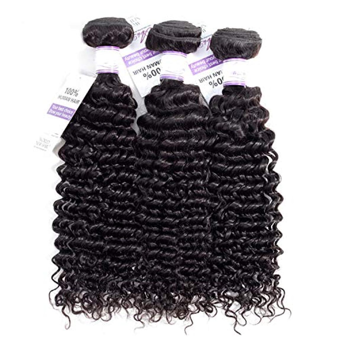 改修スクワイア湿原ブラジルのディープウェーブヘア織りバンドル100%人毛製織ナチュラルカラー非レミー髪は3個購入することができます かつら (Stretched Length : 24 26 28 inches)