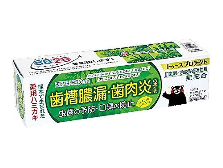 破裂推定時間とともに【5個セット】 薬用ハミガキ トゥースプロテクト ほんのりレモン味 100g×5個セット
