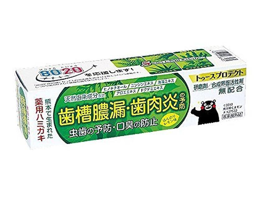 超える数学スラック【5個セット】 薬用ハミガキ トゥースプロテクト ほんのりレモン味 100g×5個セット