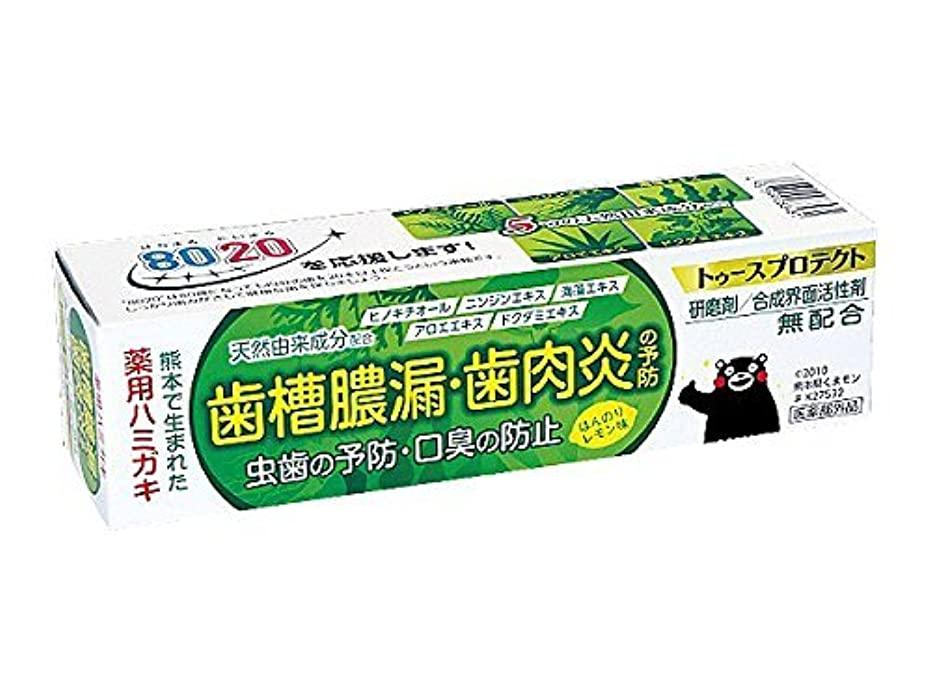 地下鉄実際の訴える【5個セット】 薬用ハミガキ トゥースプロテクト ほんのりレモン味 100g×5個セット