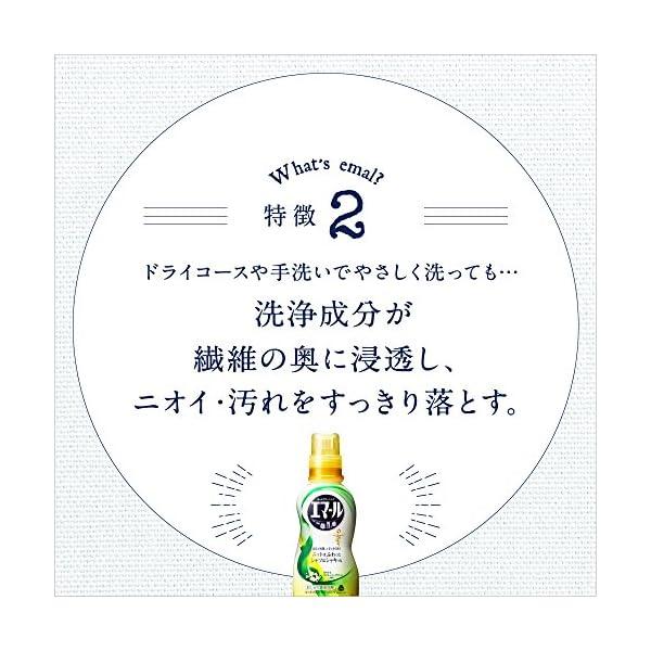 【大容量】エマール 洗濯洗剤 液体 おしゃれ着...の紹介画像6