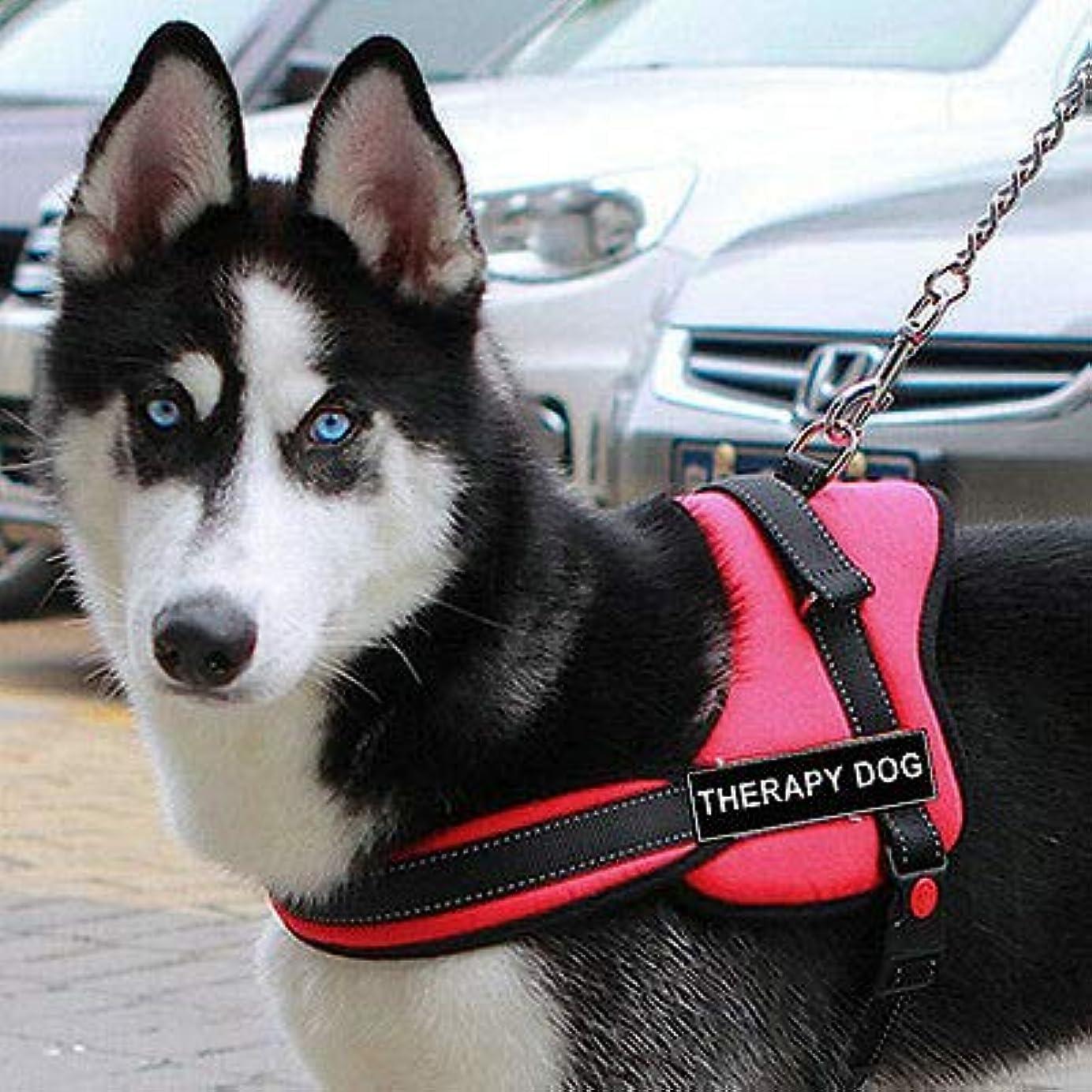 名声アトラス暴君FidgetGear Nylon Service Training Dog Harness vest Padded Heavy Duty Pitbull Husky Boxer Red L