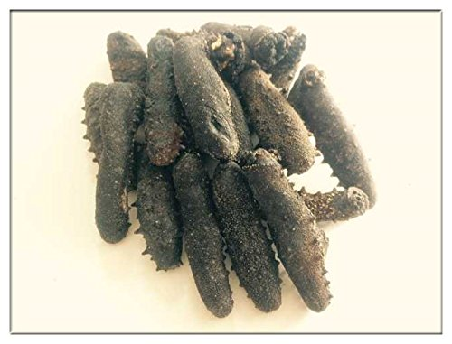 【関西産】B級品乾燥なまこ L(11g以上)350g入 天然ナマコ