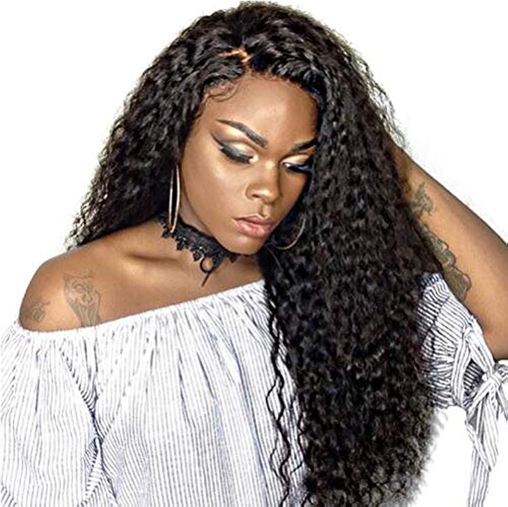 無意味ポーン覗く女性かつら150%密度波状の長い巻き毛の合成耐熱繊維の毛